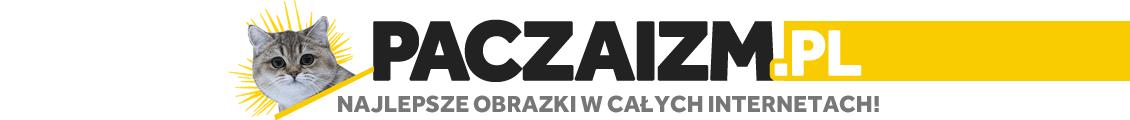 Paczaizm.pl - najlepsze obrazki w całych internetach!