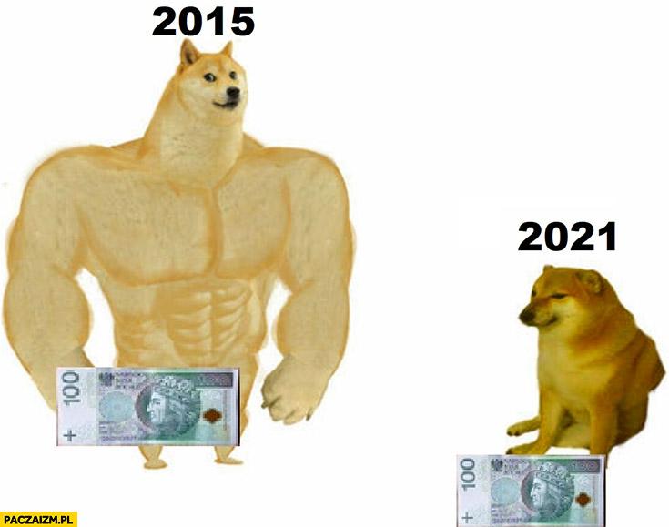 100 zł wartość w 2015 vs 2021 porównanie doge pieseł