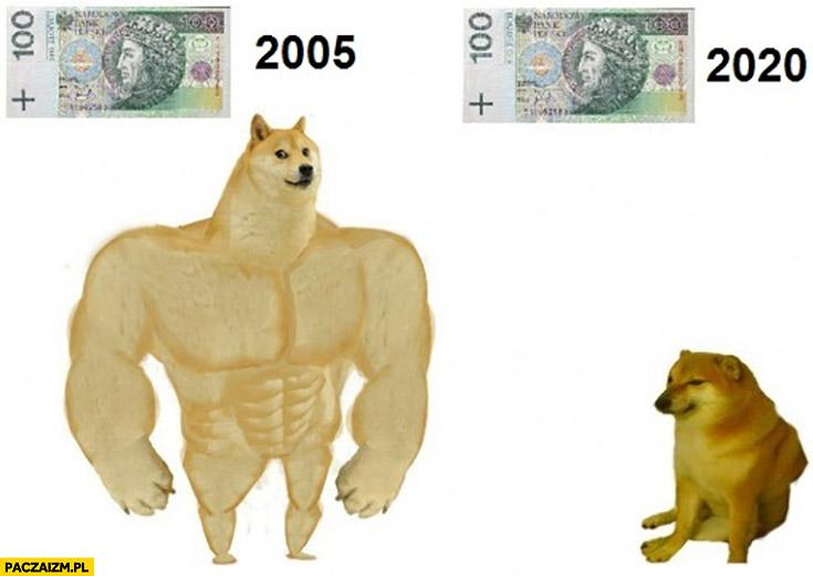 100 złotych w 2005 vs 2020 porównanie pies pieseł doge