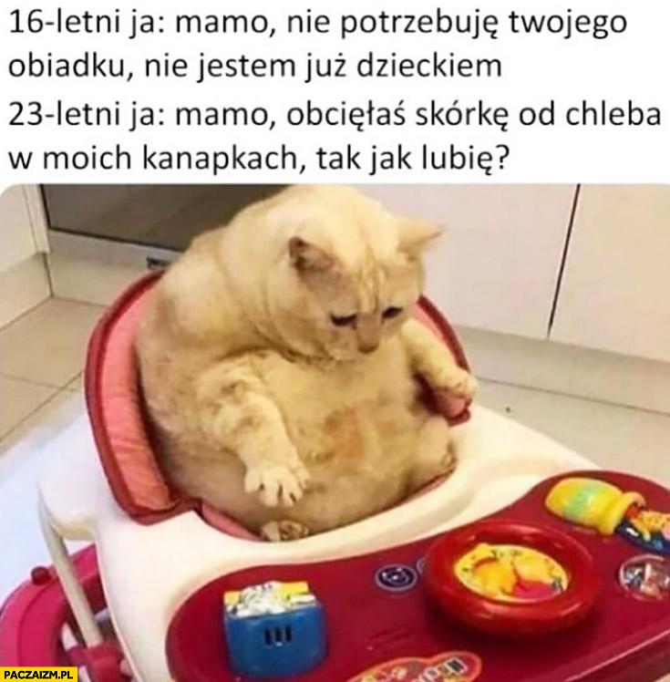 16 letni ja: mamo nie potrzebuję Twojego obiadu, nie jestem już dzieckiem, 23 letni ja: mamo obcięłaś skórkę od chleba tak jak lubię? kot