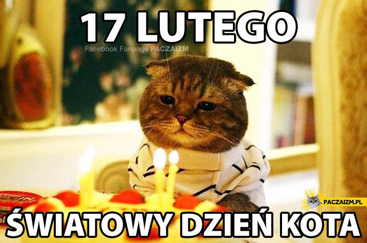 17 lutego Światowy dzień kota