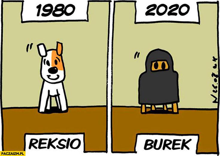 1980 Reksio 2020 Burek burka