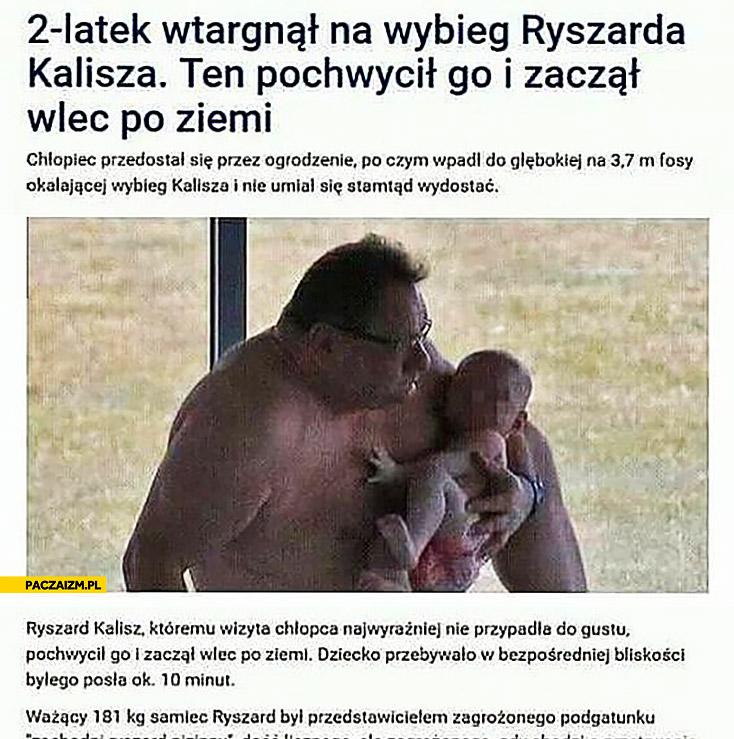 2-latek wtargnął na wybieg Ryszarda Kalisza ten pochwycił go i zaczął wlec po ziemi