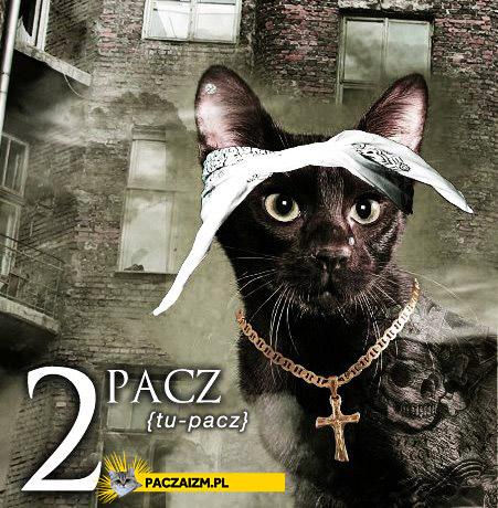 2 Pacz