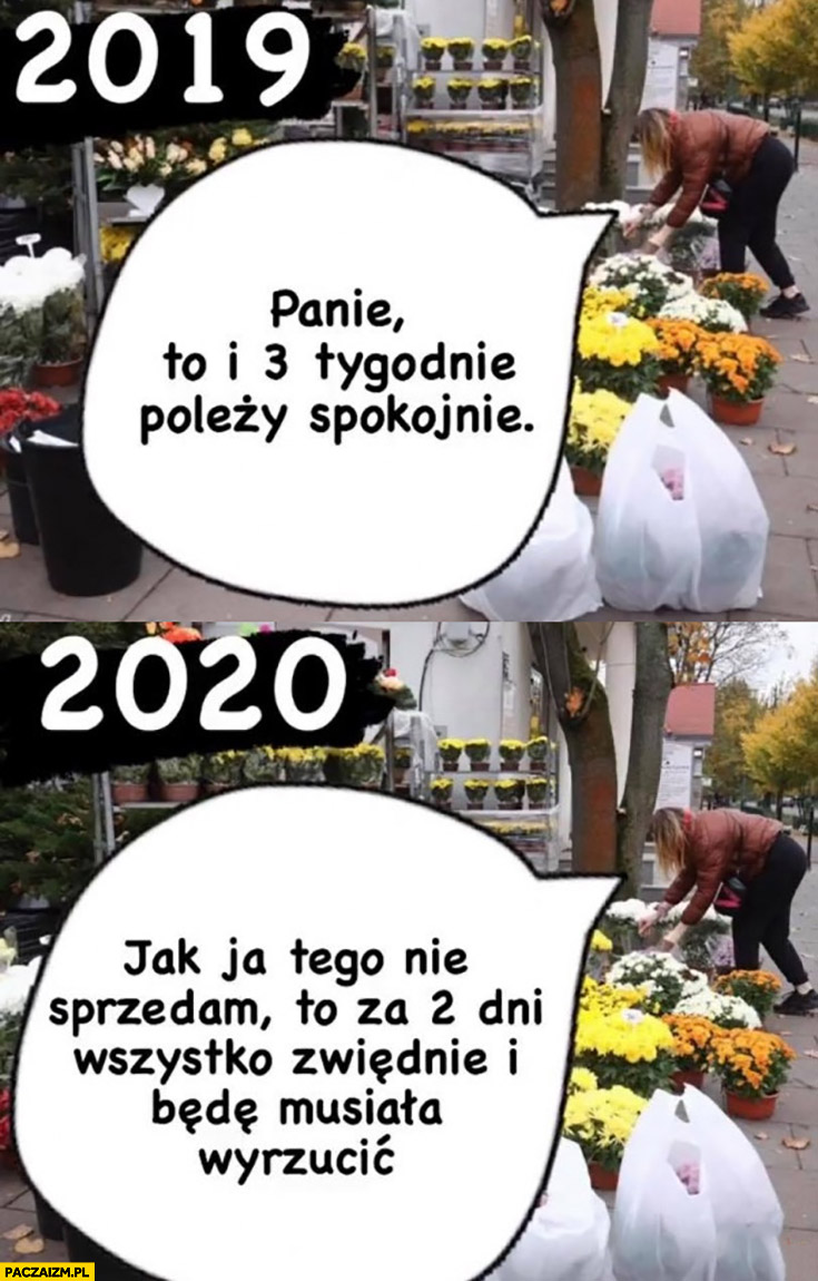 2019 kwiaciarnia to i 3 tygodnie poleży spokojnie, 2020 jak tego nie sprzedam wszystko zwiędnie i będę musiała wyrzucić