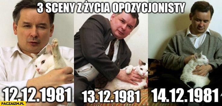 3 sceny z życia opozycjonisty Kaczyński z kotem Grudzień 1981