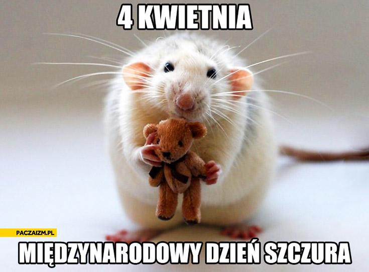 4 kwietnia międzynarodowy dzień szczura