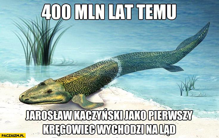 400 mln lat temu Jarosław Kaczyński jako pierwszy kręgowiec wychodzi na ląd