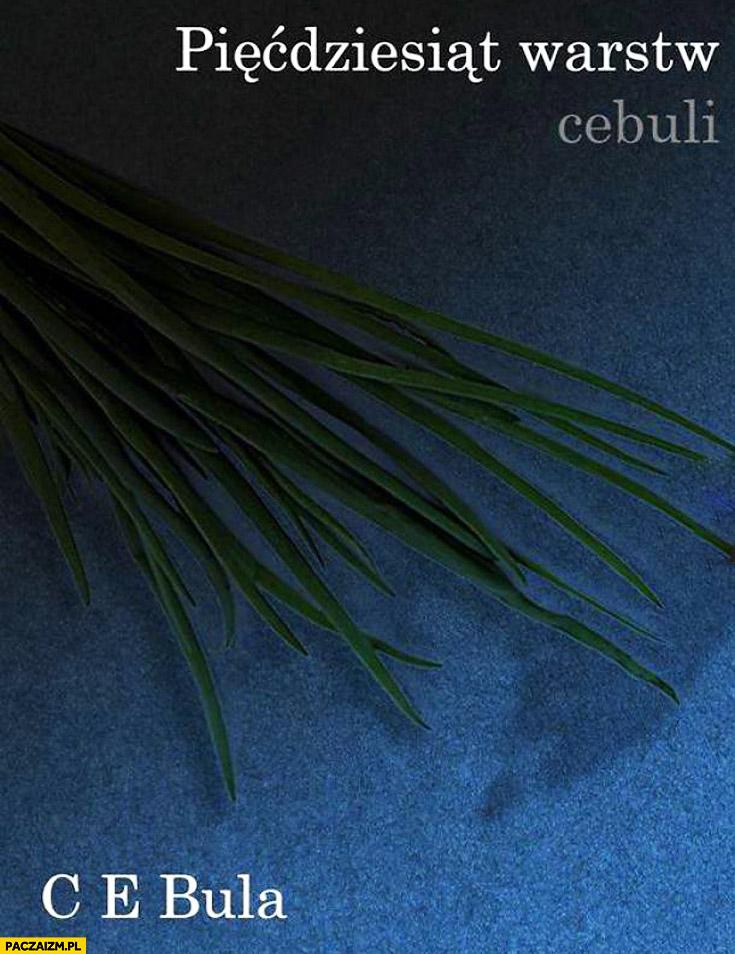 50 warstw cebuli
