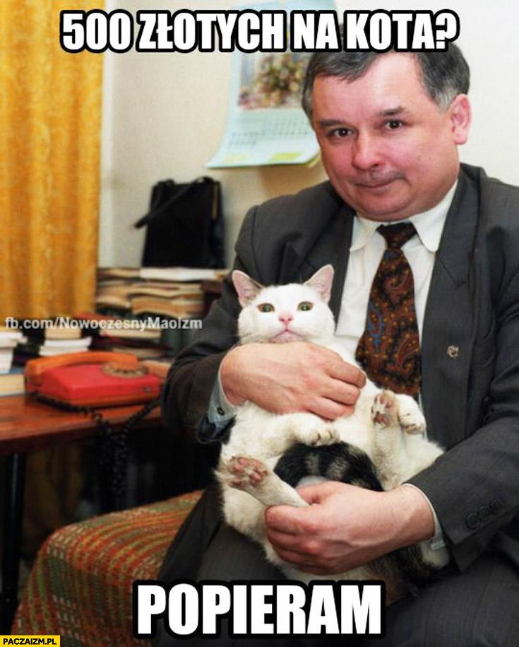 500 złotych na kota? Popieram. Kaczyński