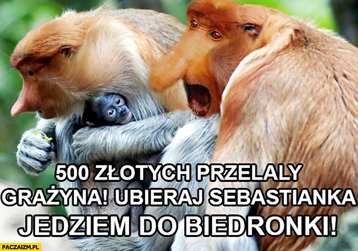 500 złotych przelały Grażyna ubieraj Sebastianka jedziem do Biedronki. Typowy Polak nosacz