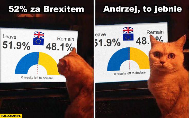 52% procent za Brexitem, Andrzej to jebnie kot