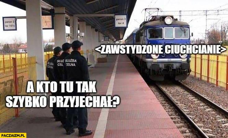 A kto tu tak szybko przyjechał zawstydzone ciuchcianie służba celna pociąg