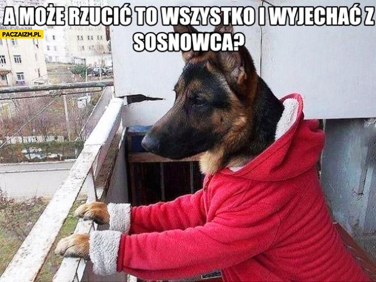 szukam zony slask Dąbrowa Górnicza