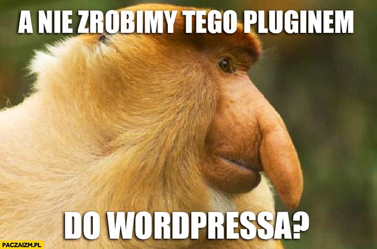 A nie zrobimy tego pluginem do WordPressa? Typowy Polak nosacz