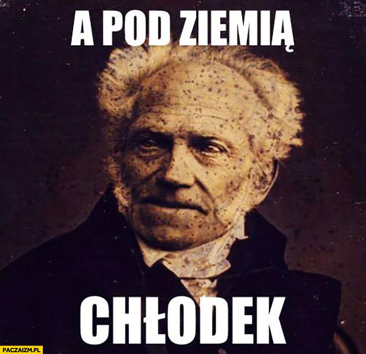 A pod ziemią chłodek Schopenhauer