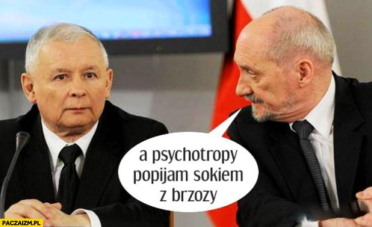 A psychotropy popijam sokiem z brzozy Macierewicz Kaczyński