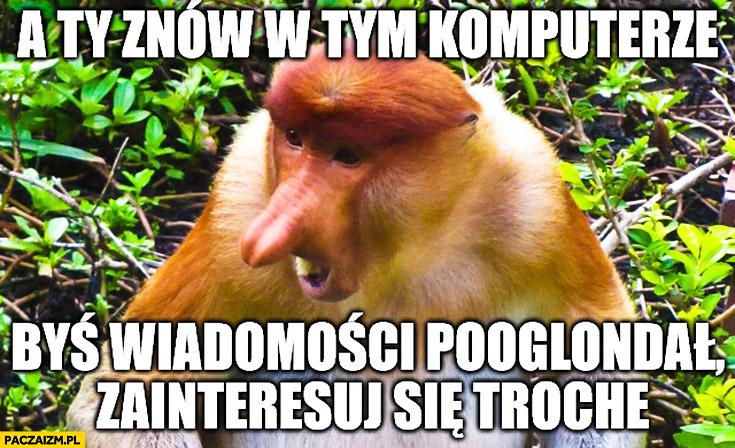 A Ty znów w tym komputerze, byś wiadomości pooglądał, zainteresuj się trochę typowy Polak nosacz małpa