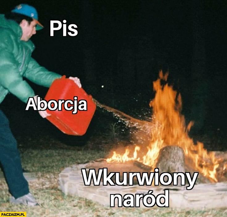 Aborcja PiS dolewa benzyny do ognia wkurzony naród