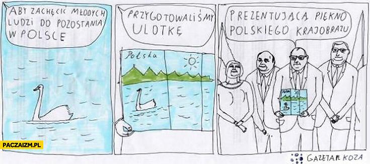 Aby zachęcić młodych ludzi do pozostania w Polsce przygotowaliśmy ulotkę prezentującą piękno polskiego krajobrazu