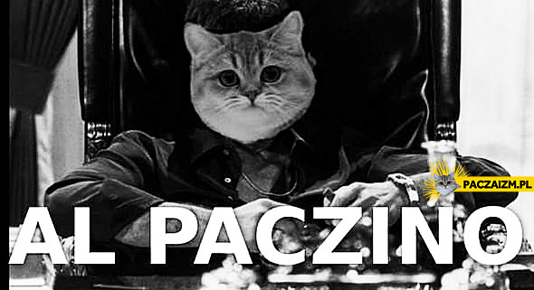 Al Paczino