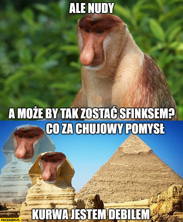 Ale nudy może by tak zostać Sfinksem? Co za głupi pomysł, kurna jestem debilem typowy Polak nosacz małpa