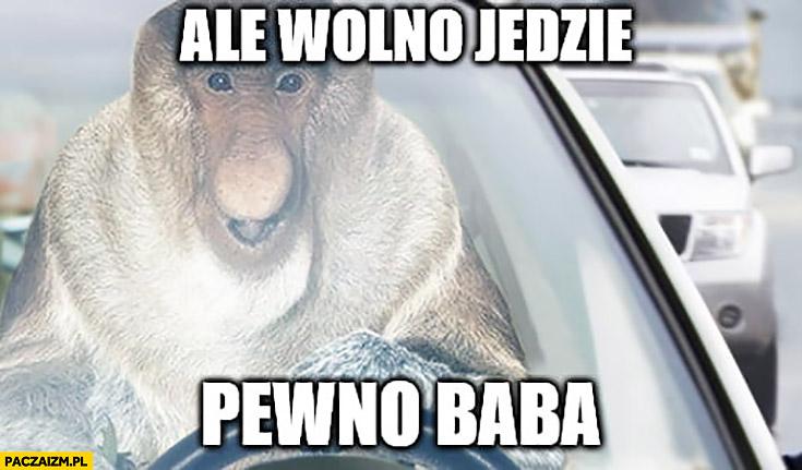 Ale wolno jedzie pewno baba typowy Polak nosacz małpa