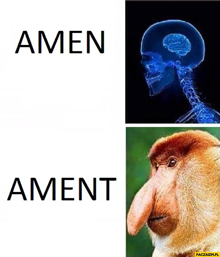 Amen ament typowy Polak nosacz mózg mem