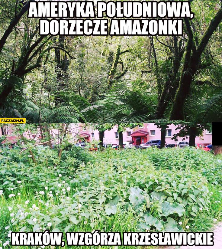Ameryka Południowa dorzecze Amazonki, Kraków Wzgórza Krzesławickie porównanie