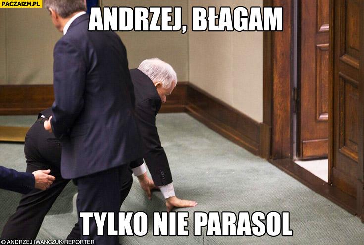 Andrzej błagam, tylko nie parasol Kaczyński wywalił się w sejmie