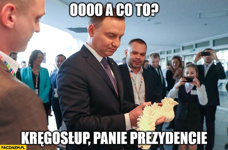 Andrzej Duda a co to kręgosłup panie prezydencie