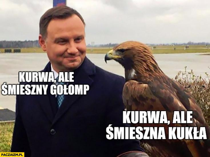 Andrzej Duda ale śmieszny gołąb, jastrząb: ale śmieszna kukła