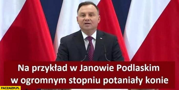 Andrzej Duda na przykład w Janowie Podlaskim w ogromnym stopniu potaniały konie