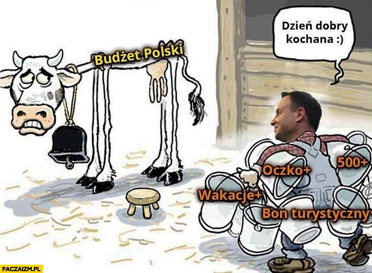 Andrzej Duda przychodzi do krowy budżet polski dzień dobry kochana: oczko plus, 500+ plus, wakacje plus, bon turystyczny