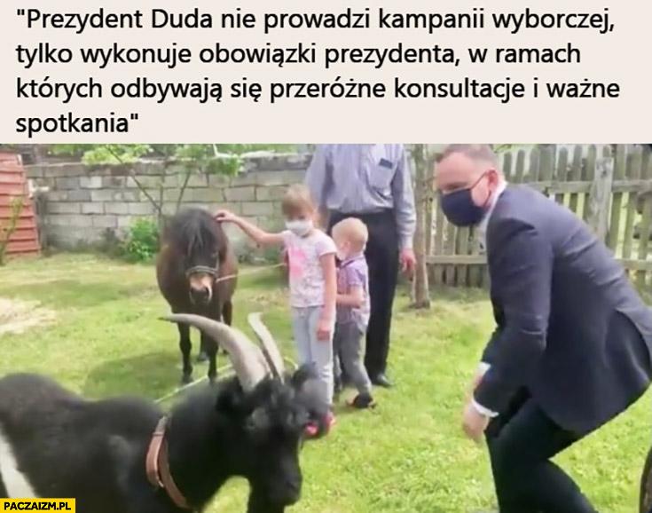 Andrzej Duda z kozami prezydent Duda nie prowadzi kampanii tylko wykonuje obowiązki prezydenta w ramach których odbywają się przeróżne konsultacje i ważne spotkania