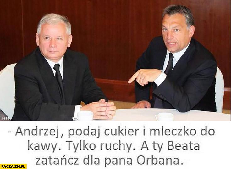 Andrzej podaj cukier i mleczko do kawy, tylko ruchy. A Ty Beata zatańcz dla Pana Orbana Kaczyński