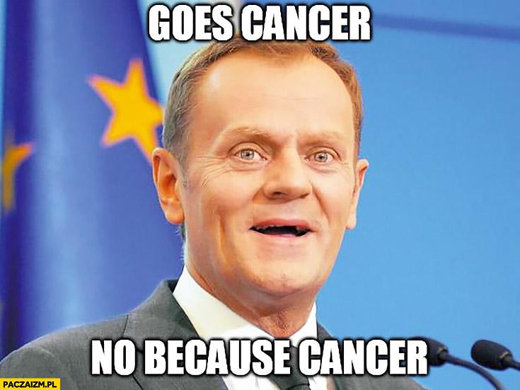 Angielski z Tuskiem goes cancer no because cancer, idzie rak nieborak