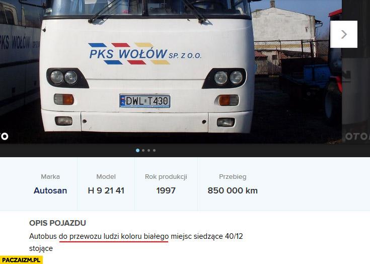 Autobus do przewozu ludzi koloru białego ogłoszenie otomoto