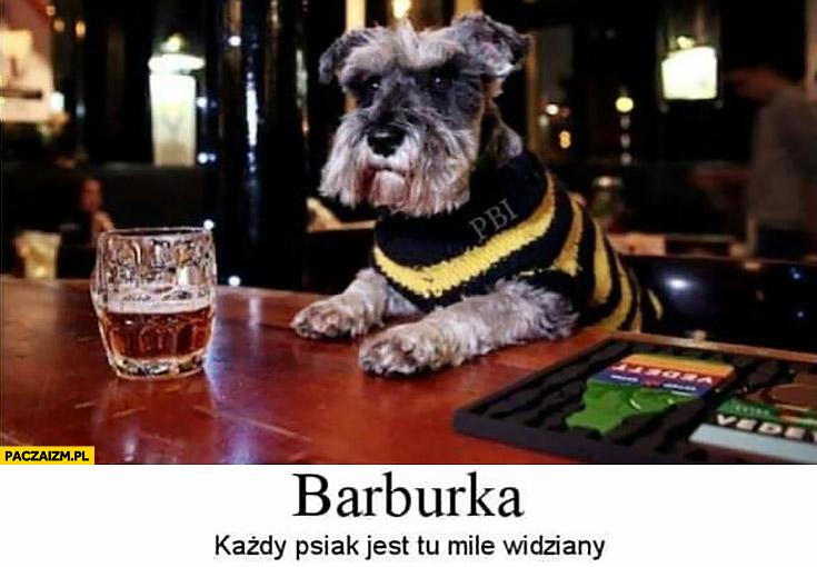Barburka każdy psiak jest tu mile widziany bar Burka