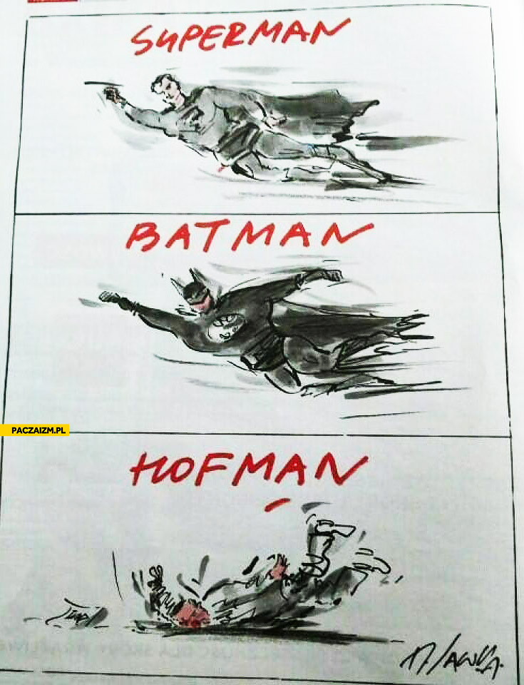 Batman Superman Hofman