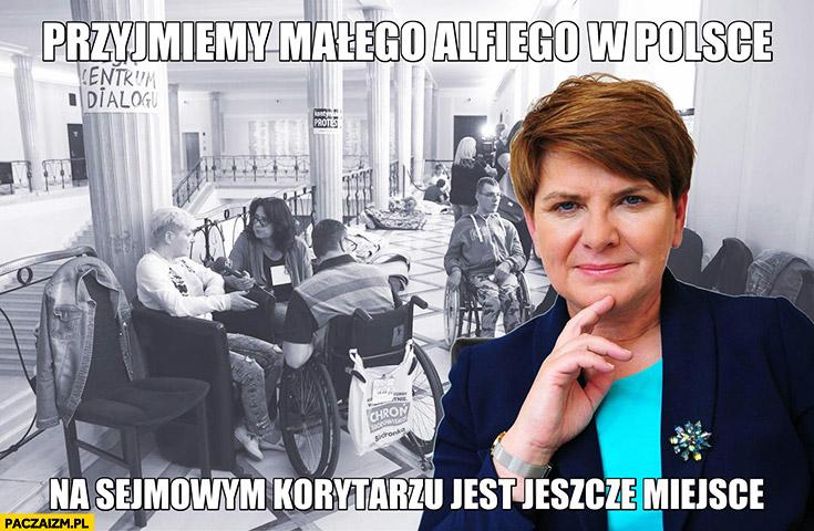 Beata Szydło przyjmiemy małego Alfiego w Polsce, na sejmowym korytarzu jest jeszcze miejsce