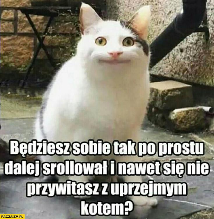 Będziesz sobie tak po prostu dalej scrollował i nawet się nie przywitasz z uprzejmym kotem?