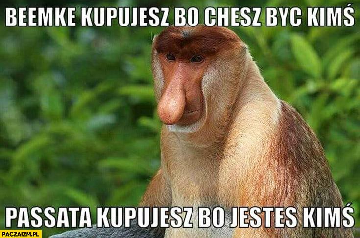 Beemke BMW kupujesz bo chcesz być kimś, Passata kupujesz bo jesteś kimś typowy Polak nosacz małpa