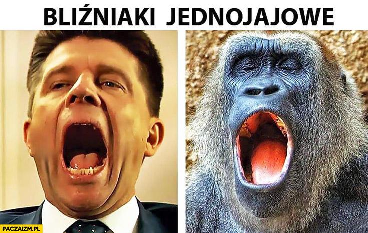 Bliźniaki jednojajowe Petru małpa otwarte usta