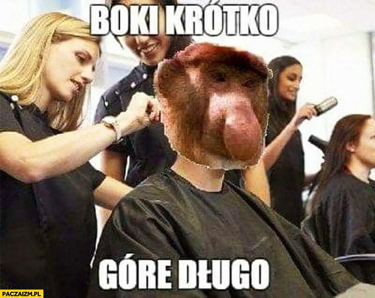Boki krótko, górę długo typowy Polak nosacz małpa u fryzjera