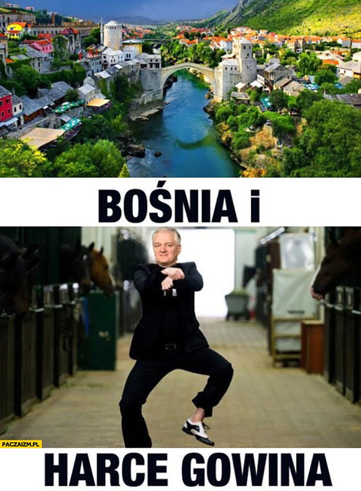 Bośnia i harce Gowina Gowin