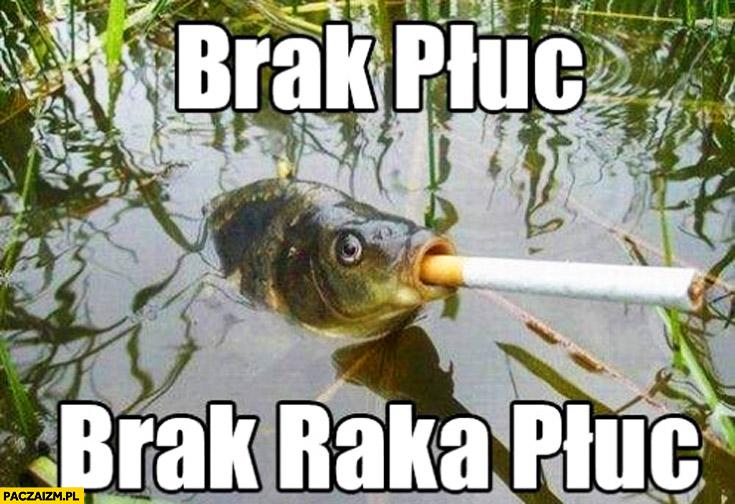 Brak płuc brak raka płuc ryba papieros