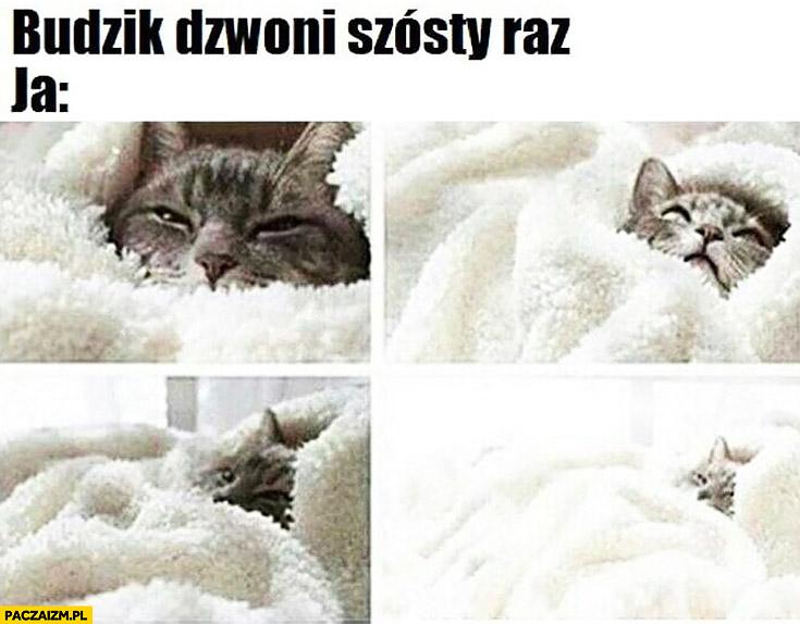 Budzik dzwoni szósty raz tymczasem ja kot owinięty kocem śpi dalej