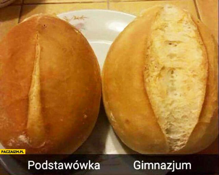 Bułka porównanie podstawówka gimnazjum dziewczyny