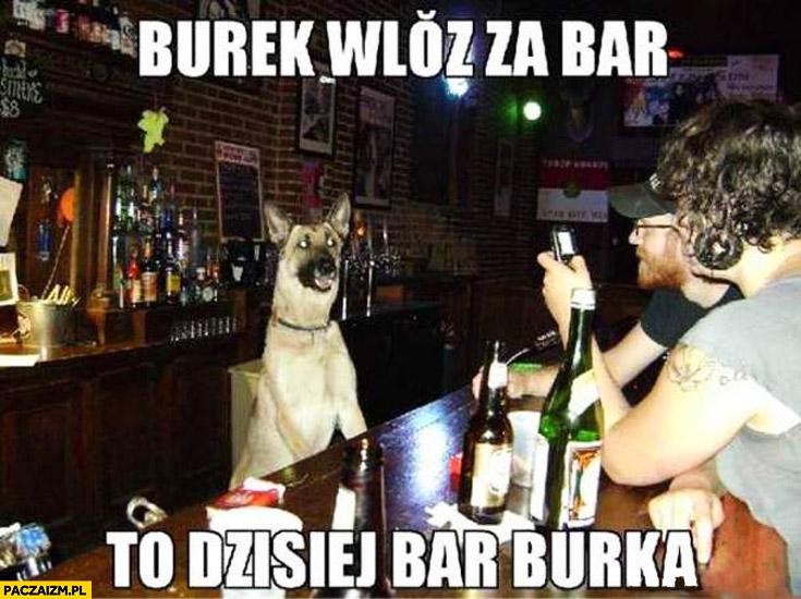 Burek wlazł za bar to dzisiaj bar burka Barbórka